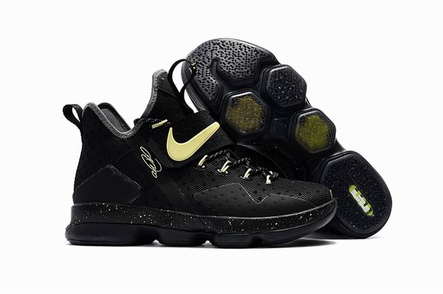 lebron shoes XIV-010